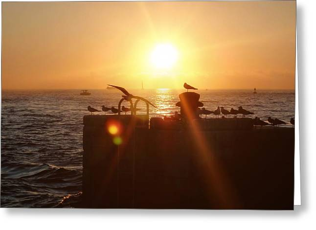 Farewell The Day Greeting Card by JAMART Photography