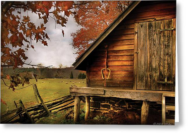 Shed Greeting Cards - Farm - Barn - Shed out back Greeting Card by Mike Savad