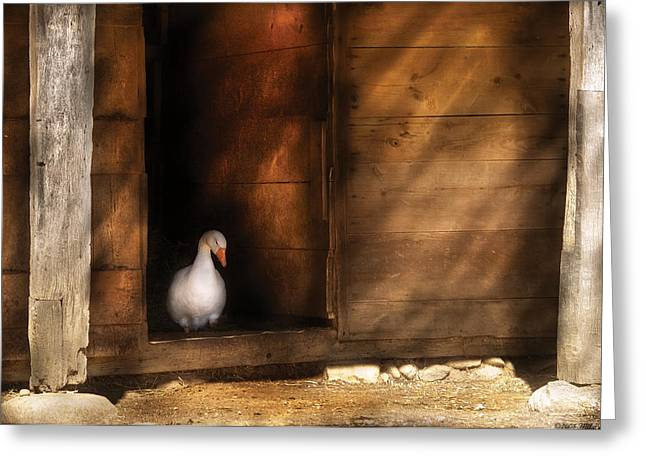 Farm - Duck - Welcome To My Home  Greeting Card by Mike Savad
