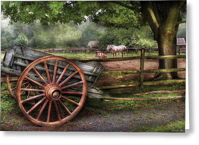 Farm - Horse - Grey Mare Greeting Card by Mike Savad