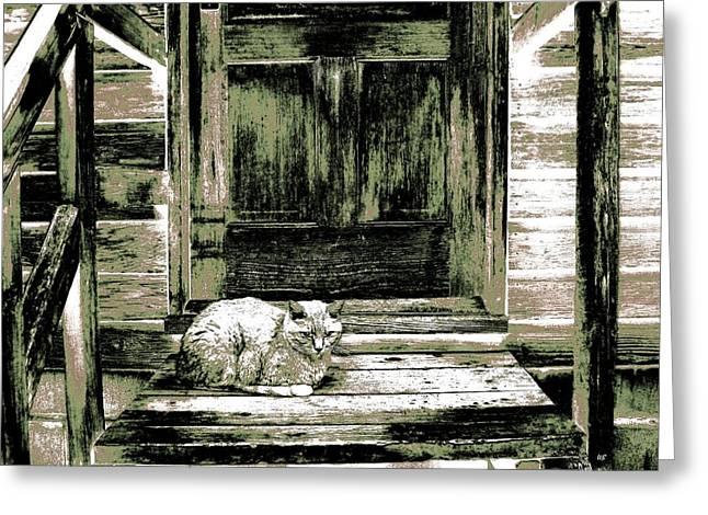 Farm Cat Greeting Card
