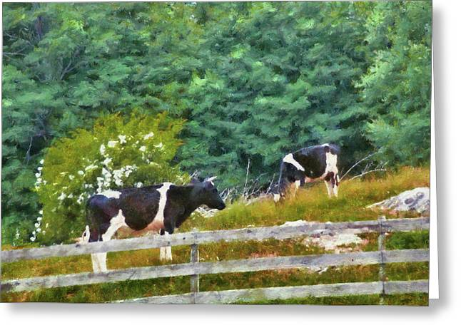 Farm - Cow - Moo  Greeting Card by Mike Savad