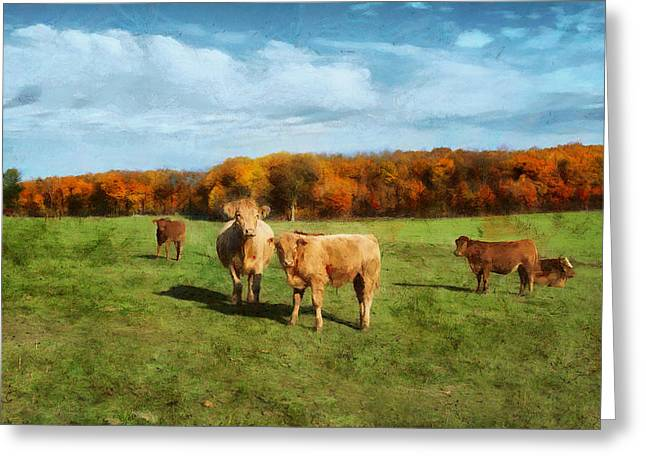 Farm Field And Brown Cows Greeting Card