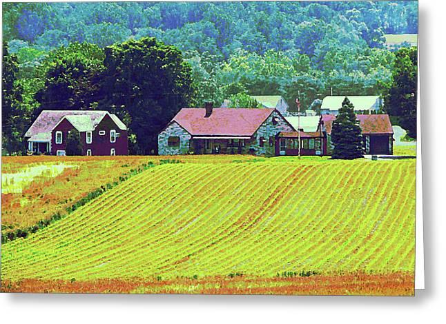 Farm Homestead Greeting Card by Susan Savad