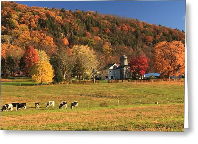 Farm In Autumn Below Mount Holyoke Greeting Card by John Burk