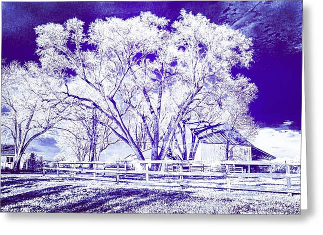 Farm In Suburbia With Wildcat Flare Greeting Card