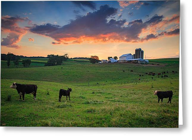 Farm Life In Beaver County Greeting Card