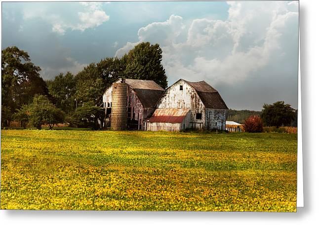Farm - Ohio - Broken Dreams Greeting Card