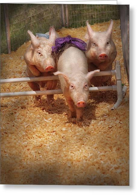 Farm - Pig - Getting Past Hurdles Greeting Card by Mike Savad