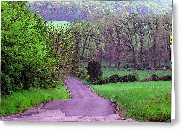 Greeting Card featuring the photograph Farm Road by Susan Carella