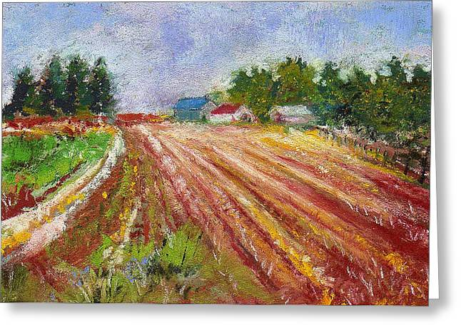 Field. Cloud Pastels Greeting Cards - Farm Rows Greeting Card by David Patterson