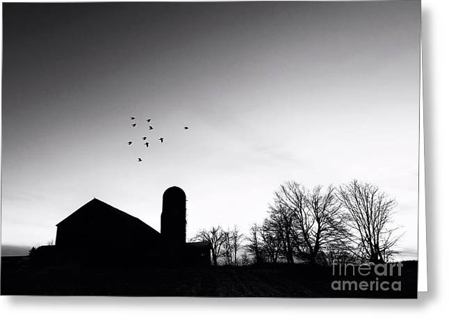 Farm Silhouette B/w Greeting Card by Anthony Djordjevic