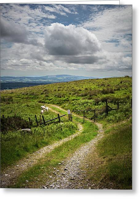 Farm Trail Along The Wicklow Way Greeting Card