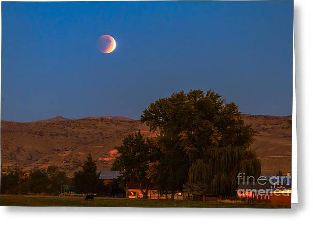 Farm View Of Supermoon Eclipse Greeting Card by Robert Bales