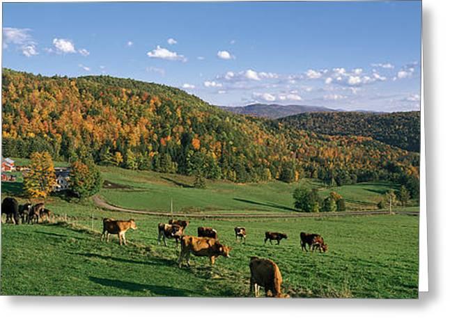 Farm Vt Usa Greeting Card