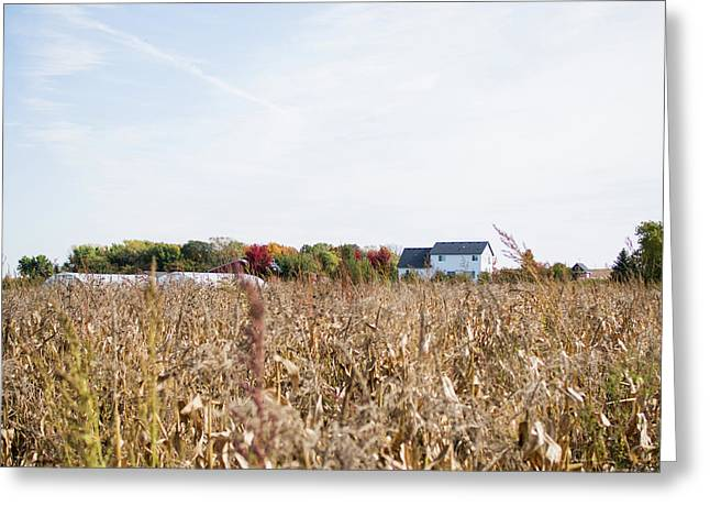 Greeting Card featuring the photograph Farm by Whitney Leigh Carlson