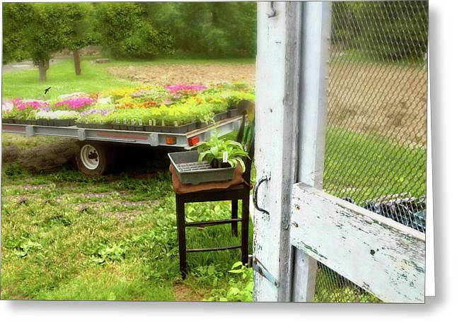 Farm Yard Door Greeting Card by Diana Angstadt