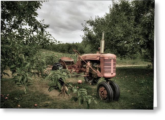 Farmall Tractor On A Farm  Greeting Card