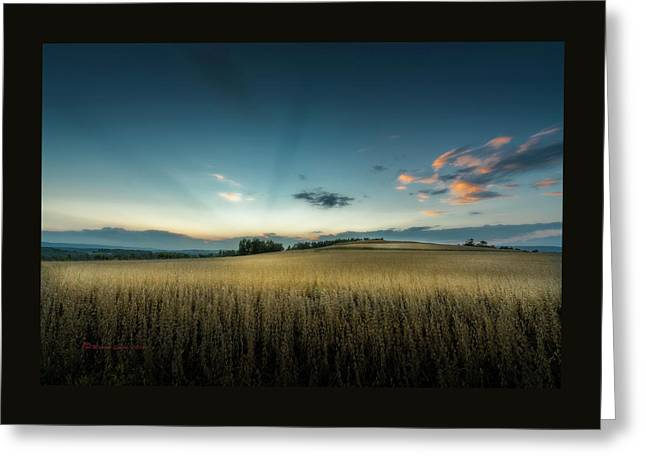 Farmers Field Greeting Card by Marvin Spates