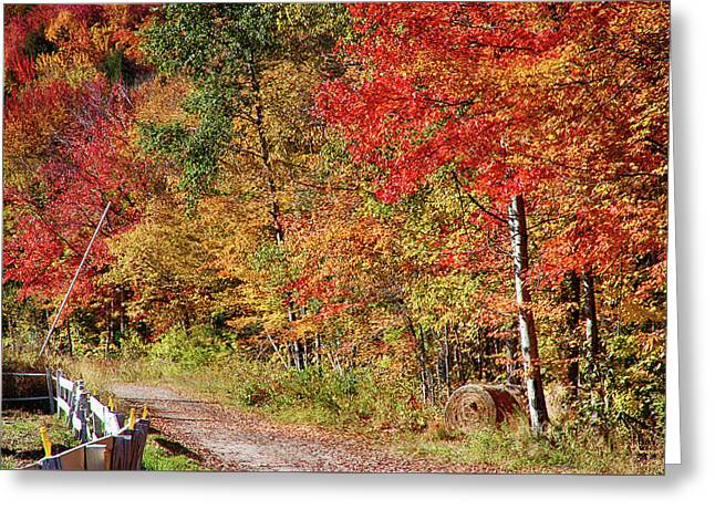 Greeting Card featuring the photograph Farmers Path Of Fall Colors by Jeff Folger