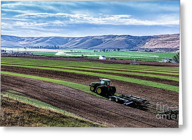 Farming In Pardise Agriculture Art By Kaylyn Franks Greeting Card