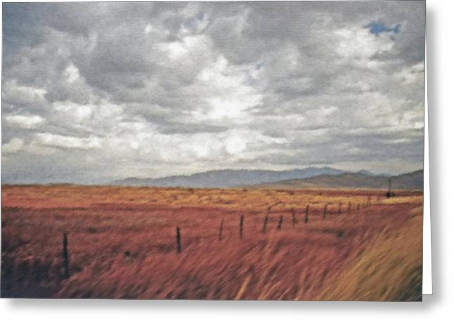 Farmland 2 Greeting Card by Steve Ohlsen