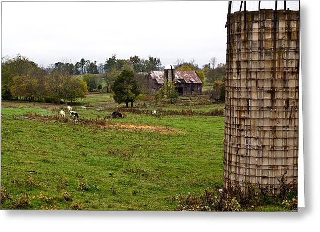 Tennessee Farm Greeting Cards - Farmland Greeting Card by Douglas Barnett