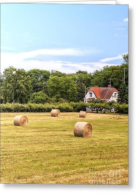 Farmland In Sweden Greeting Card by Antony McAulay