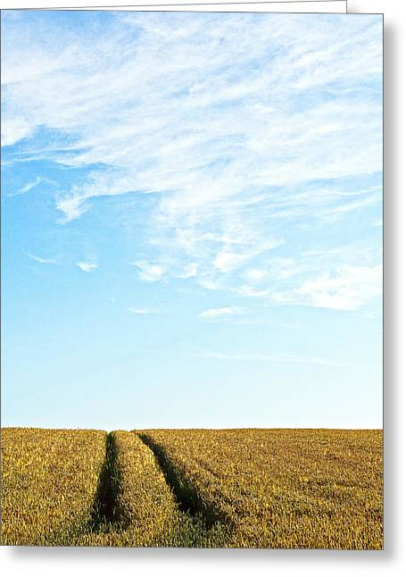 Cornfield Greeting Cards - Farmland to the horizon 2 Greeting Card by Heiko Koehrer-Wagner