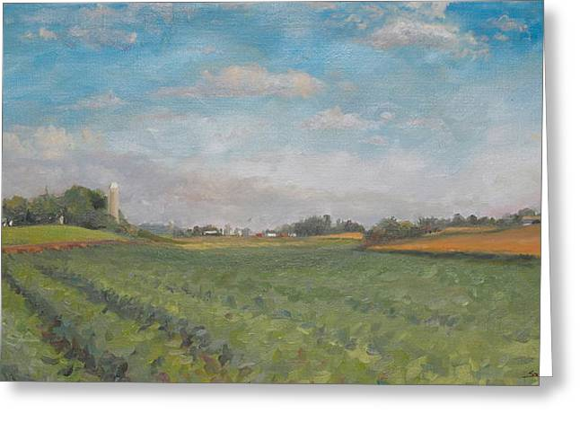 Farms And Fields Greeting Card by Sandra Quintus
