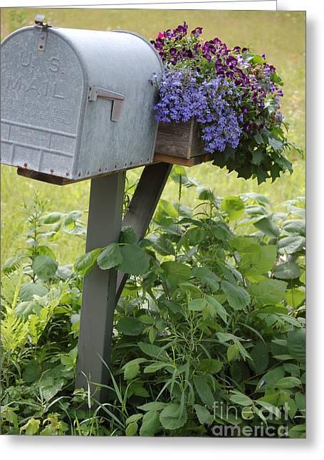 Farm's Mailbox Greeting Card