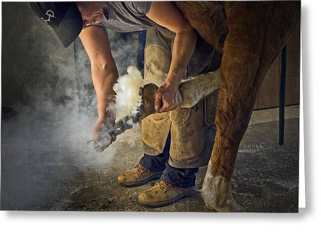 Farrier Visit - 365-46 Greeting Card by Inge Riis McDonald