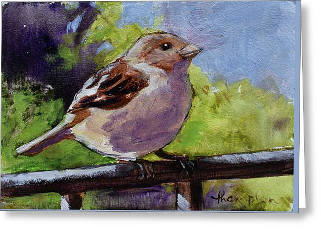 Fat Little Sparrow Greeting Card by Tracie Thompson