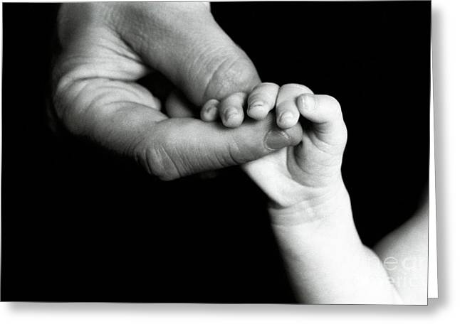 Father Holding Hand Of Baby Greeting Card by Sami Sarkis