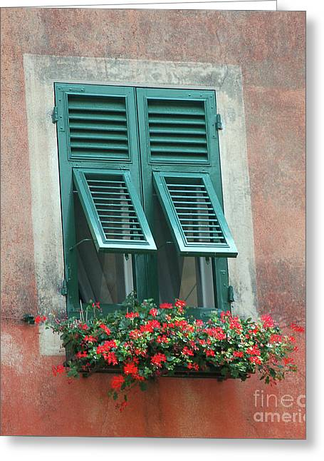 Faux  Painting Window  Greeting Card