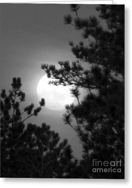 Favorite Full Moon Greeting Card