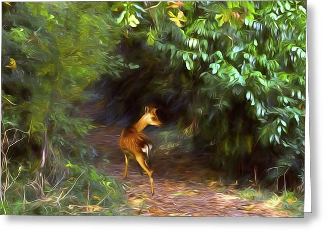 Fawn Forest Greeting Card