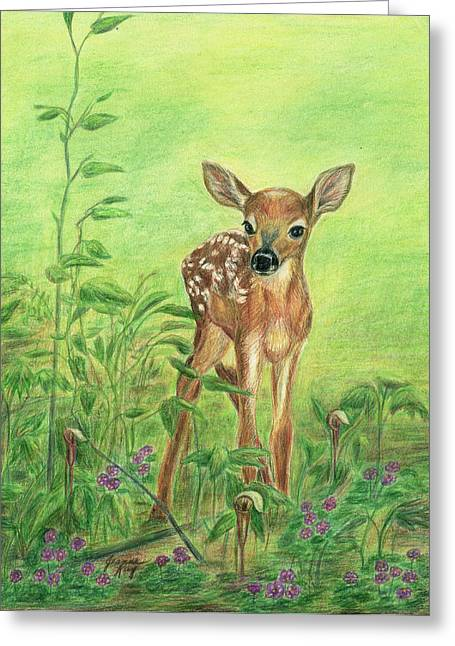 Fawn Greeting Card by Jeanne Kay Juhos