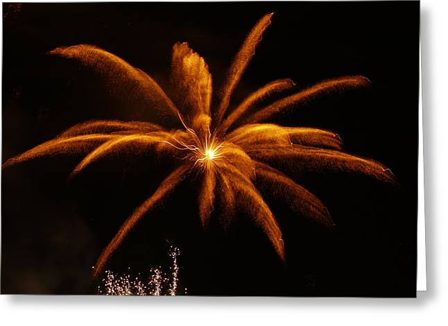 Greeting Card featuring the photograph Feather Of Light by Michael Canning