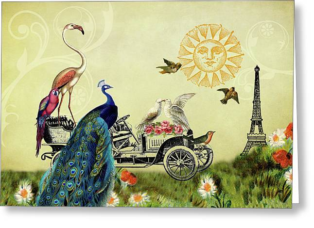 Feathered Friends In Paris, France Greeting Card by Peggy Collins