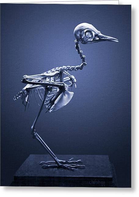 Greeting Card featuring the photograph Featherless In Blue by Joseph Westrupp