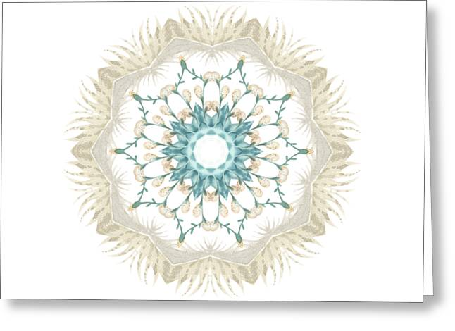 Feathers And Catkins Kaleidoscope Design Greeting Card