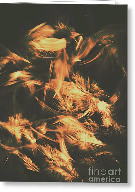 Feathers And Darkness Greeting Card by Jorgo Photography - Wall Art Gallery