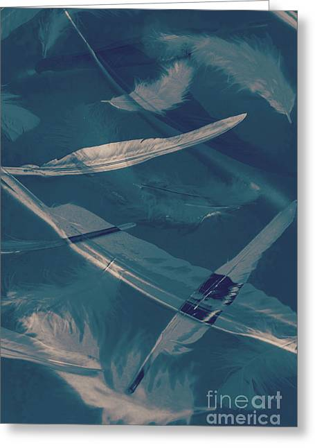 Feathers Floating In The Air Greeting Card by Jorgo Photography - Wall Art Gallery