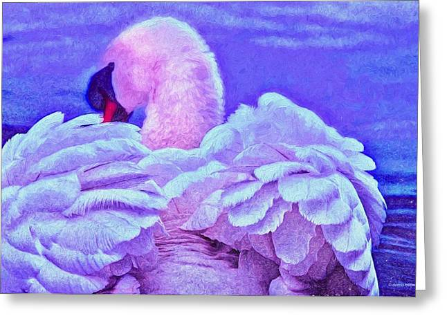 Feathers Of Royalty Greeting Card