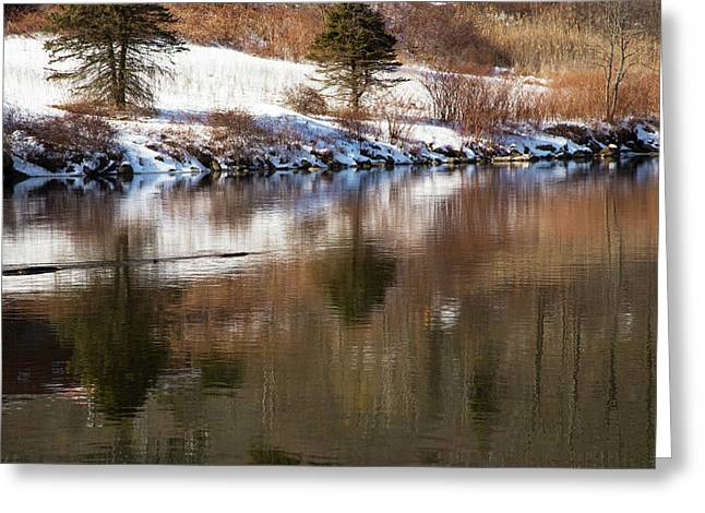 February Reflections Greeting Card by Karol Livote