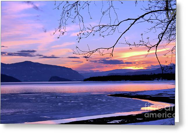 February Sunset 2 Greeting Card by Victor K