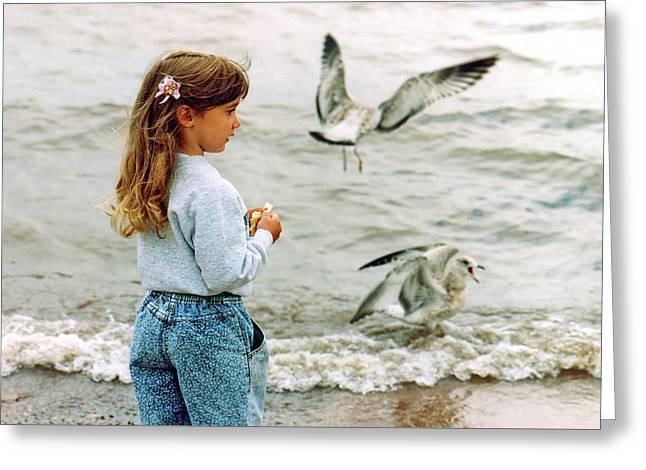 Feeding Gulls Greeting Card