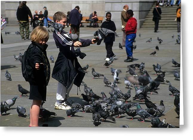 Feeding The Birds Greeting Card by Robert  Torkomian