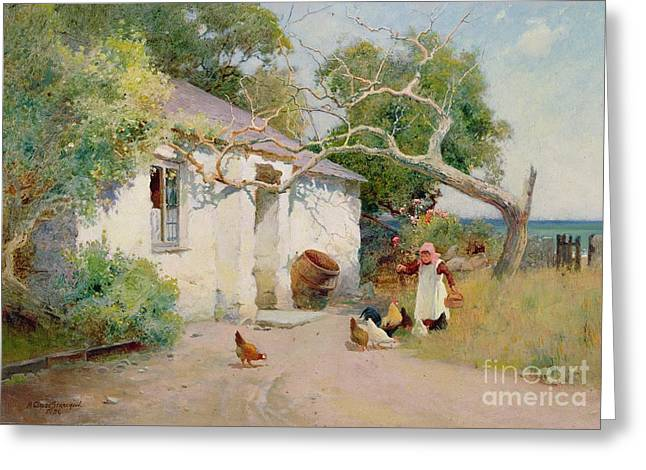 Feeding The Hens Greeting Card by Arthur Claude Strachan